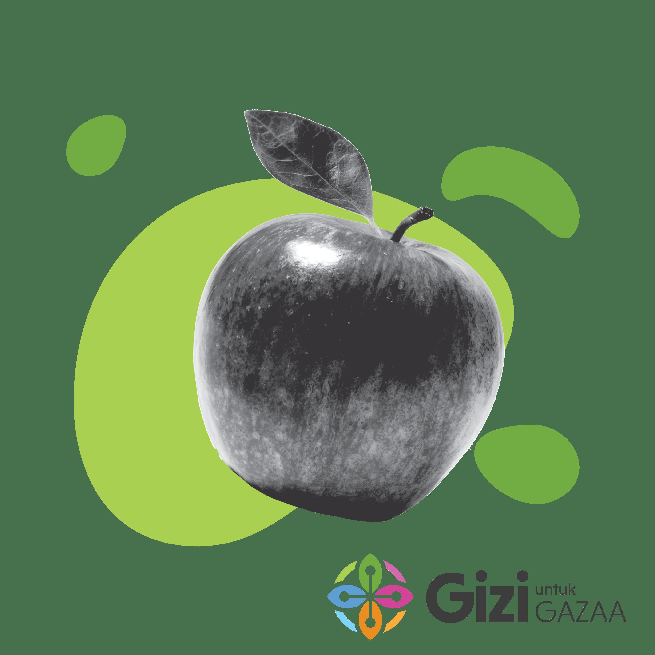 gizi-gaza